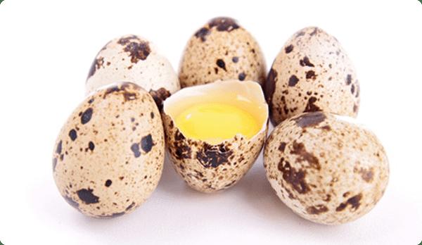 Яйца при гастрите — сырые, вареные, перепелиные