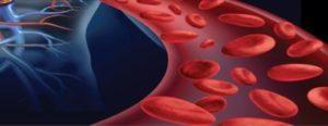 Кишечное кровотечение - причины, признаки и симптомы, способы лечения