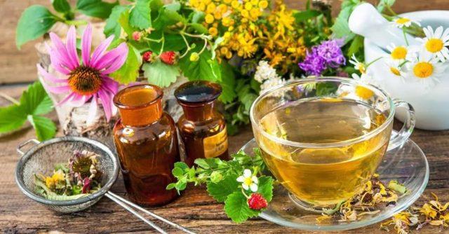 Лечение гастрита травами в домашних условиях - самые эффективные травяные сборы