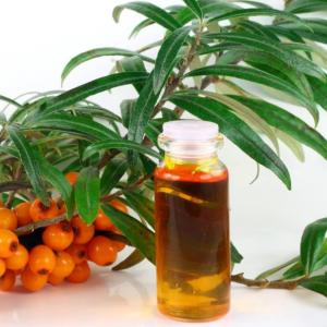 Лечение гастрита облепиховым маслом - как принимать