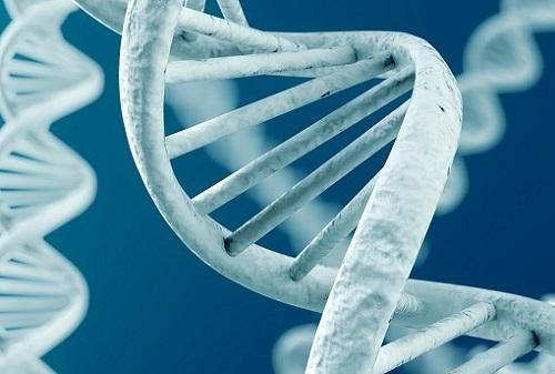 Зернистый гастрит: причины, диагностика и методы лечения