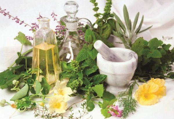 Травы при гастрите: правила приготовления и противопоказания